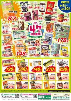 業務スーパーのカタログ( 期限切れ)