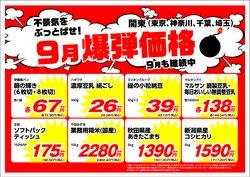 業務スーパーのカタログ( あと10日)