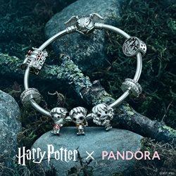 Pandoraのカタログに掲載されているPandora ( 30日以上)