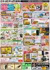 ホームセンタームサシのカタログ( 期限切れ )