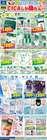ドン・キホーテのカタログ( 30日以上 )