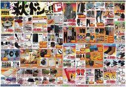ドン・キホーテのカタログ( あと6日)