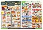 横浜市でのライフのカタログ ( 期限切れ )