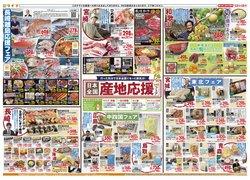 ライフのカタログに掲載されているスーパーマーケット ( 明日で期限切れ)