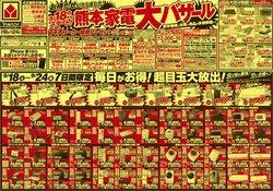 ヤマダ電機のカタログ( あと3日)