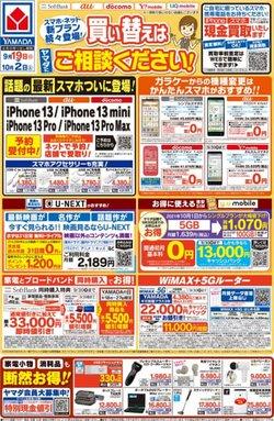 ヤマダ電機のカタログ( あと10日)
