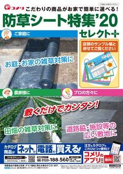 長崎市でのコメリのカタログ ( 30日以上 )