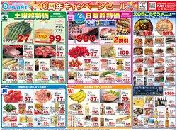 スーパーセンタープラントのカタログに掲載されているスーパーマーケット ( 今日で期限切れ)