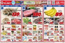 スーパーセンタープラントのカタログに掲載されているスーパーマーケット ( 今日公開)