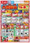名古屋市でのコジマのカタログ ( 期限切れ )