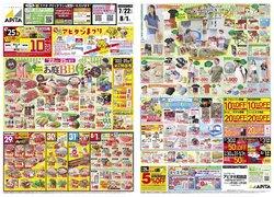 アピタのカタログに掲載されているスーパーマーケット ( あと8日)