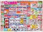 札幌市でのベスト電器のカタログ ( あと2日 )