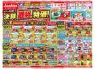 横浜市でのジョーシンのカタログ ( 期限切れ )