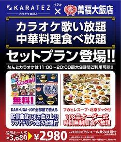 カラオケの鉄人のカタログに掲載されているカラオケ  &  エンターテイメント ( 明日で期限切れ)
