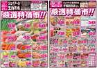 JR生鮮市場のカタログ( 期限切れ )