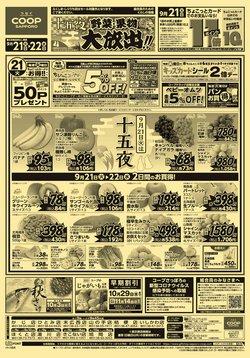 コープさっぽろのカタログに掲載されているスーパーマーケット ( 今日で期限切れ)