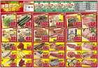 りんごハウスグループ 卸売スーパーのカタログ( 期限切れ )