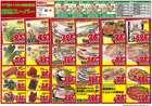 りんごハウスグループ 卸売スーパーのカタログ( 今日で期限切れ )