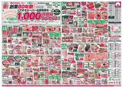 アオキスーパーのカタログに掲載されているスーパーマーケット ( 今日公開)