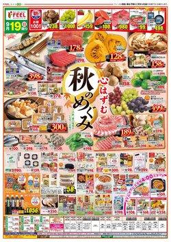 フィールのカタログに掲載されているスーパーマーケット ( 明日で期限切れ)