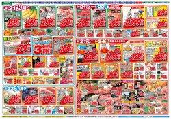 サンプラザのカタログに掲載されているスーパーマーケット ( 今日公開)