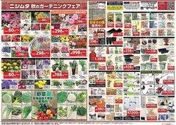 ニシムタのカタログに掲載されているスーパーマーケット ( あと6日)