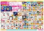 名古屋市でのコスモスのカタログ ( 期限切れ )