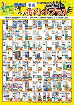 レディ薬局のカタログ( あと21日)