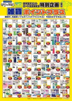 レディ薬局のカタログ( あと13日)
