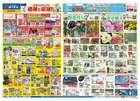 横浜市でのコーナンのカタログ ( 明日で期限切れ )