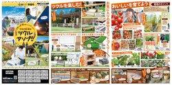 ジョイフル本田のカタログに掲載されているジョイフル本田 ( 期限切れ)
