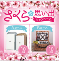 名古屋のカタログに掲載されているスギ薬局