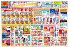 大阪市でのマツモトキヨシのカタログ ( 期限切れ )