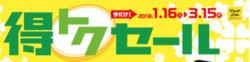松戸のカタログに掲載されているマツモトキヨシ