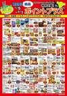 札幌市でのツルハドラッグのカタログ ( あと10日 )