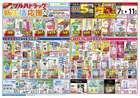 札幌市でのツルハドラッグのカタログ ( 期限切れ )