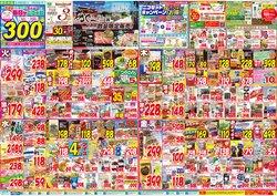 杏林堂のカタログに掲載されているスーパーマーケット ( 1 day ago)