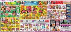 イオンスーパーセンターのカタログに掲載されているスーパーマーケット ( 今日で期限切れ)