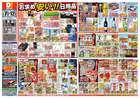 東京都でのダイレックスのカタログ ( 明日で期限切れ )