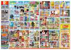 東京都のダイレックスからのカタログに掲載されているスーパーマーケット ( 今日で期限切れ )