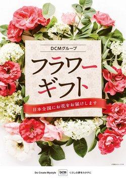 DCMダイキのカタログに掲載されているDCMダイキ ( あと9日)