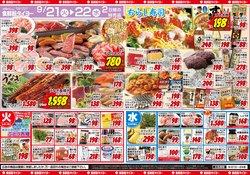 食鮮館タイヨーのカタログ( 今日で期限切れ)