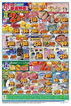 ジップマートのカタログに掲載されているスーパーマーケット ( 今日公開)