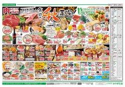 みやぎ生活協同組合のカタログに掲載されているスーパーマーケット ( 今日公開)