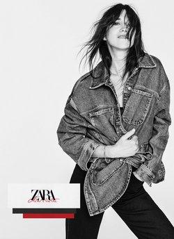 ZARAのカタログ( あと21日)