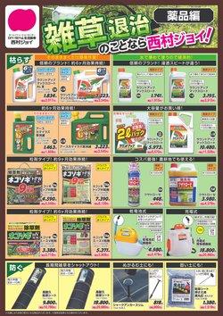西村ジョイのカタログに掲載されている西村ジョイ ( あと8日)