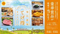塚田農場のカタログ( 期限切れ)