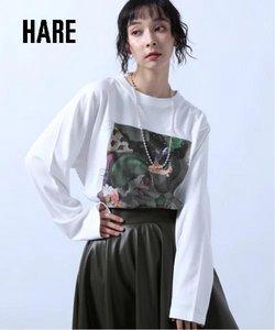 HAREのカタログに掲載されているHARE ( あと26日)